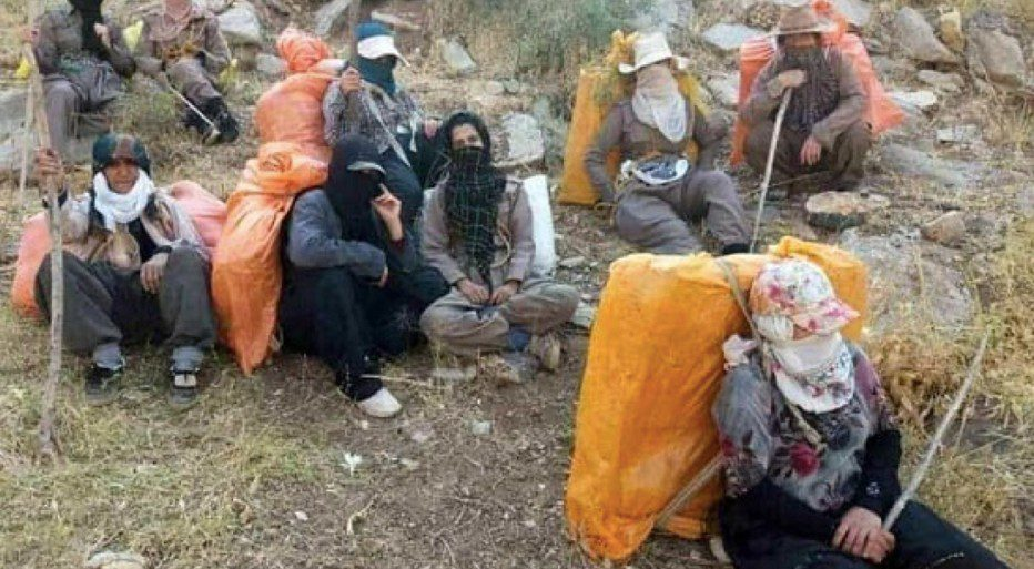 In A Deplorable State Are The Female Kolbars Working On Iran's Western Border Mountains