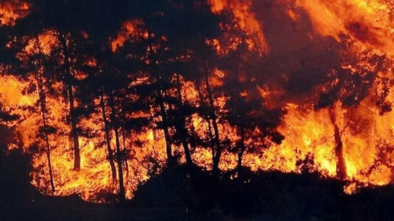 Southern Turkey is Burning